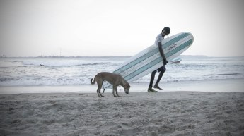 Surfer and dog
